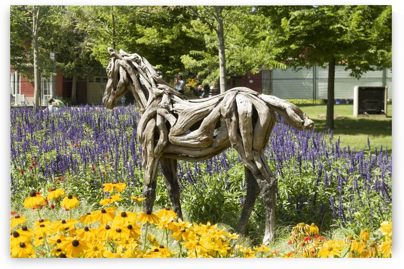 Odyssey the horse and Hope the Colt sculptures made of driftwood by Heather Jansch. 2 by Bob Corson