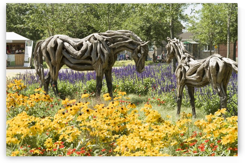 Odyssey the horse and Hope the Colt sculptures made of driftwood by Heather Jansch. by Bob Corson
