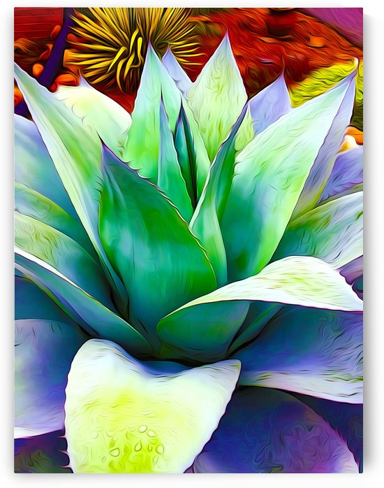 Succulent Dewdrop by Impression Of Things