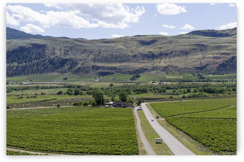 Okanagan Valley wine country 13 by Bob Corson