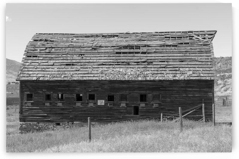 Derelict barn on John Carmichael Haynes homestead Oliver BC1 BW by Bob Corson