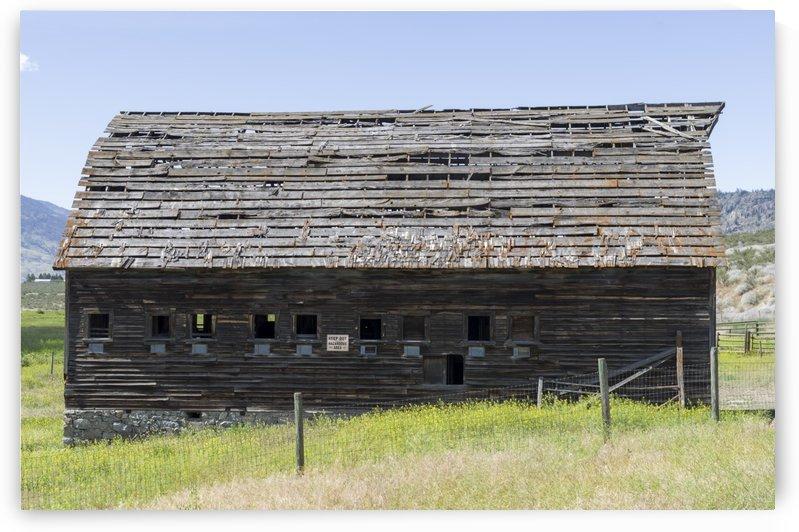 Derelict barn on John Carmichael Haynes homestead Oliver BC 1 by Bob Corson