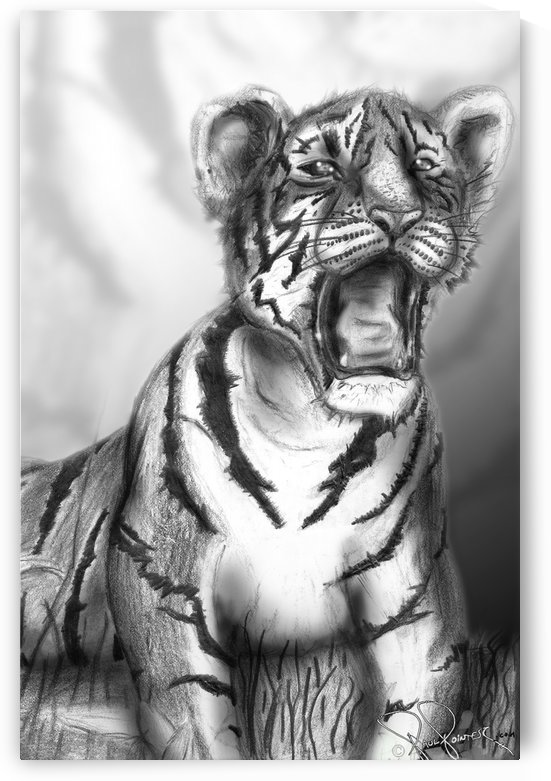 Morning Tiger by P2