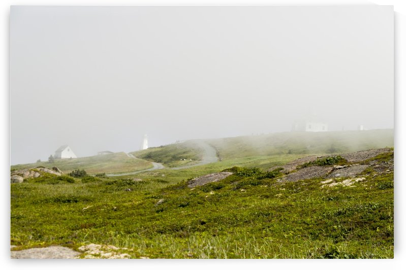 View from Cape Spear Walking trails 15 by Bob Corson