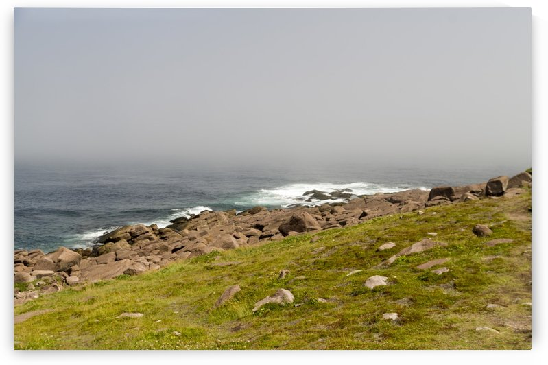 View from Cape Spear Walking trails 13 by Bob Corson
