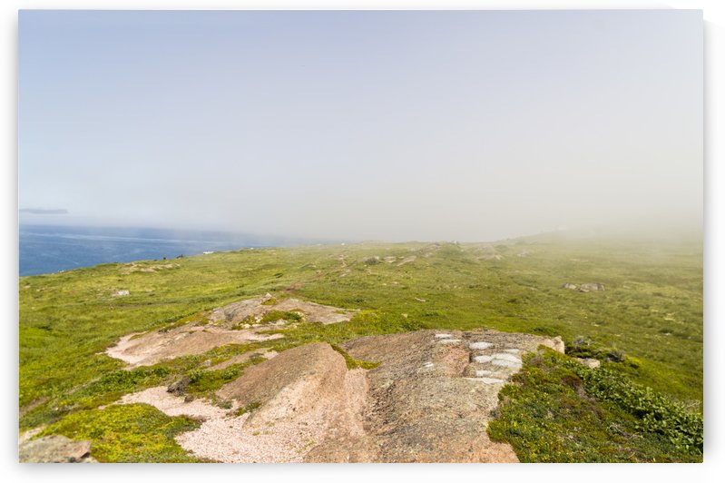 View from Cape Spear Walking trails 12 by Bob Corson