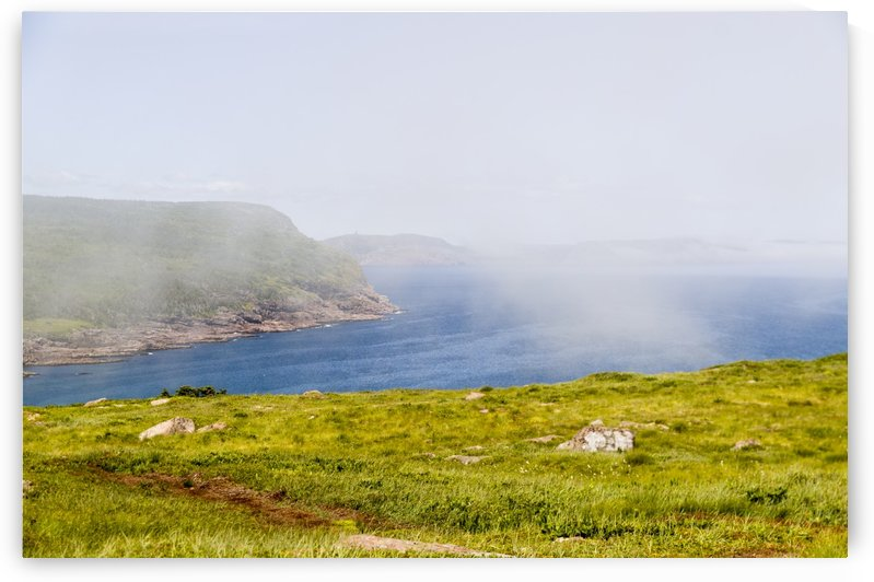 View from Cape Spear Walking trails 4 by Bob Corson