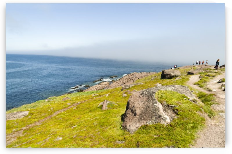 View from Cape Spear Walking trails 3 by Bob Corson