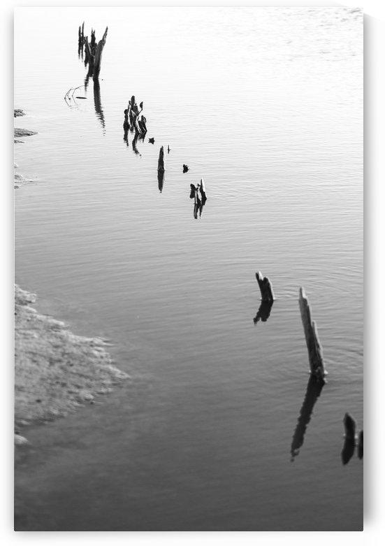 MIN STICKS  by Dea Rodríguez