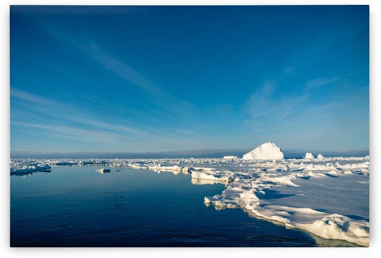 Peter Kaple Iceberg on the edge of a Pool by Peter Kaple