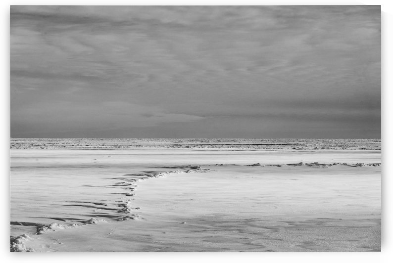 A Different Planet B&W by Peter Kaple