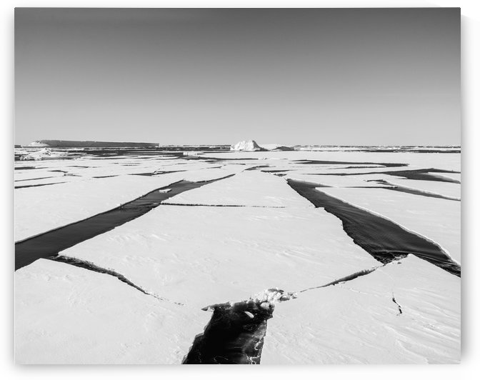 Lines in the Floes by Peter Kaple