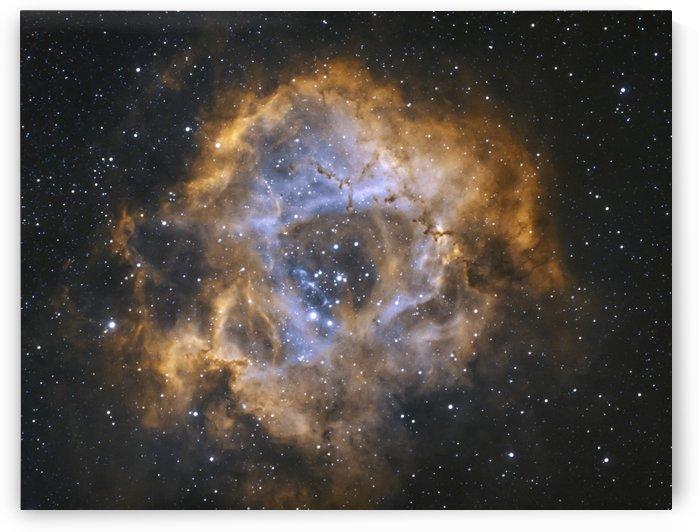 Rosette Nebula by RichardBoudreauAstrophotography