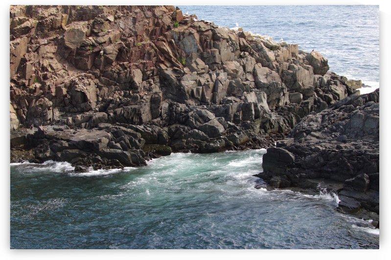 Elliston Newfoundland Coastline 7 by Bob Corson