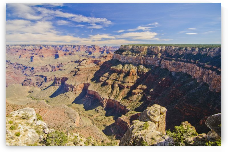The Grand Canyon by Juvelyn Green