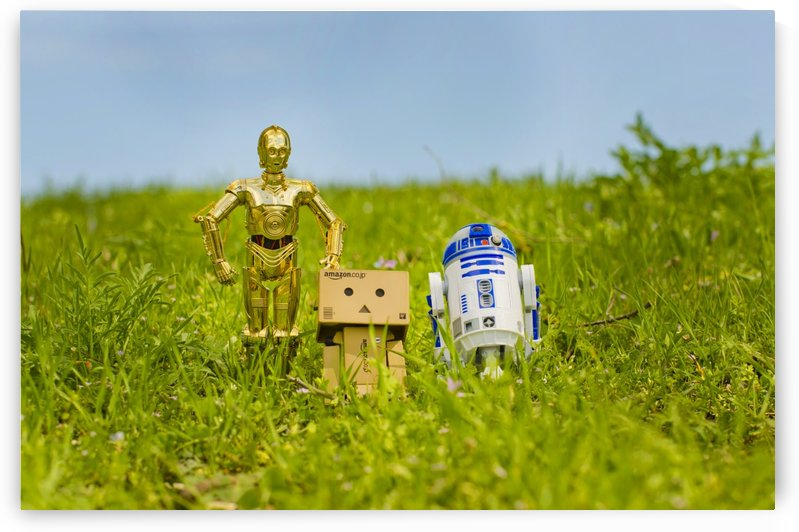 Danbo and Friends by Juvelyn Green