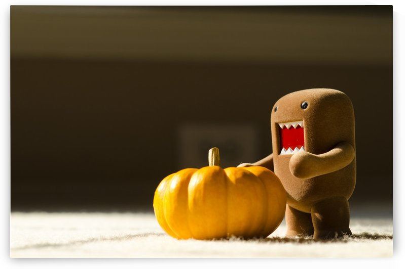 Domo and Pumpkin by Juvelyn Green