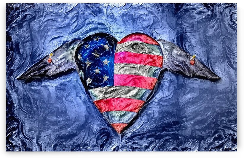 USA Winged Heart by Bruce Rolff