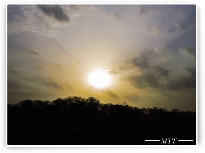 Morning Sun by MTT