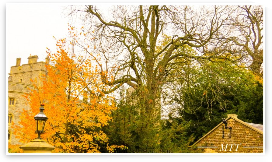 Colors of Autumn 1 by MTT