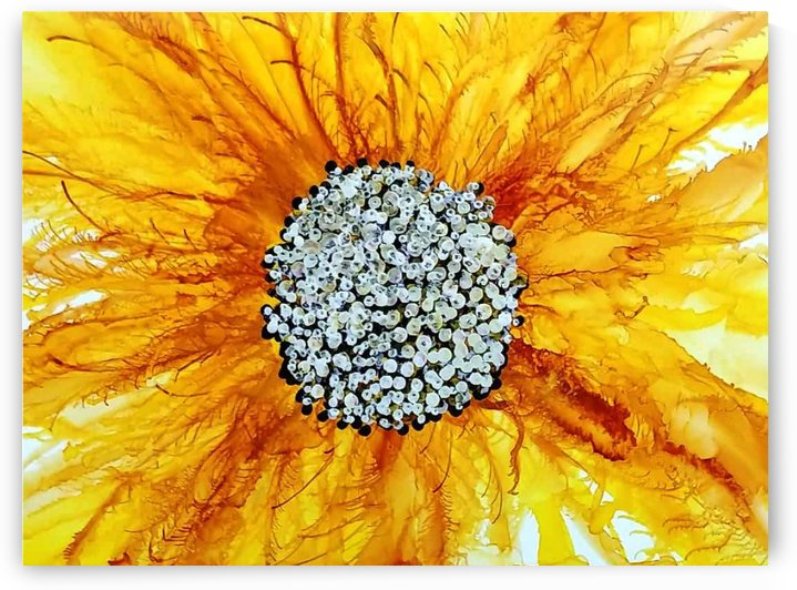 Sunflower by Liz Dillard