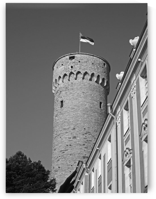 Toompea Castle B&W by Gods Eye Candy
