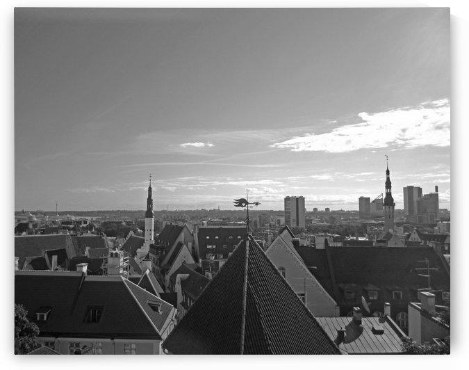 Aerial View of Tallinn B&W by Gods Eye Candy