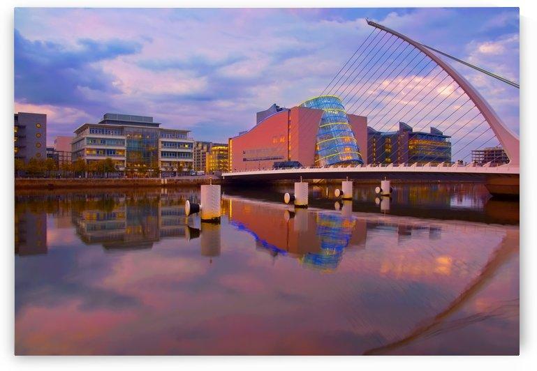 D 240 Samuel Beckett Bridge by Michael Walsh