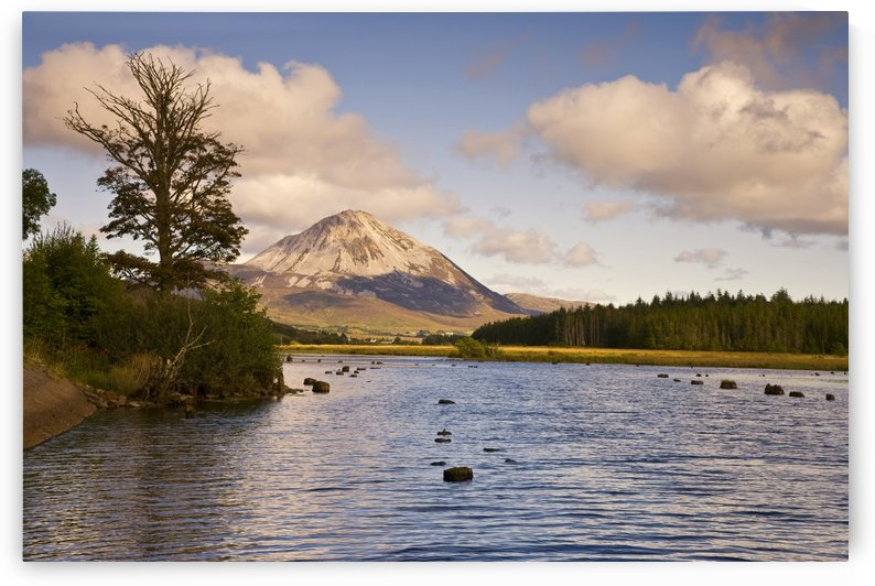 DL 019 Errigal by Michael Walsh