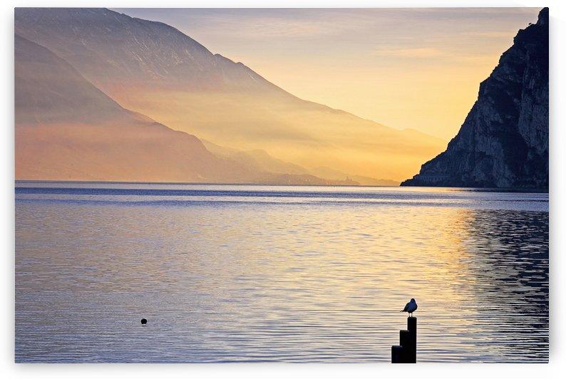 OS 005 Lake Garda by Michael Walsh