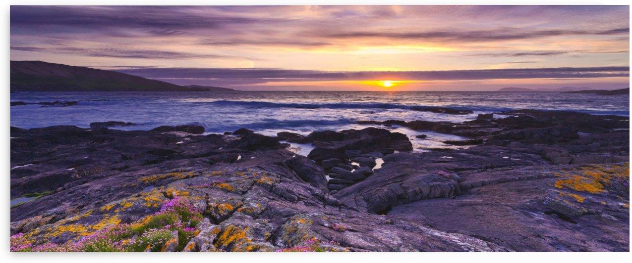 C 650 Beara Coastline by Michael Walsh