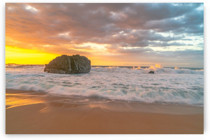 Beach Brilliance by Steve Luther