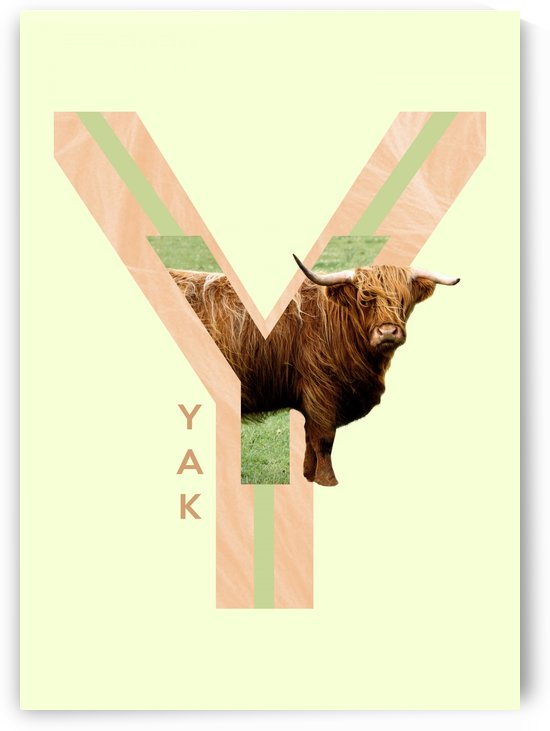Yak by ABConcepts