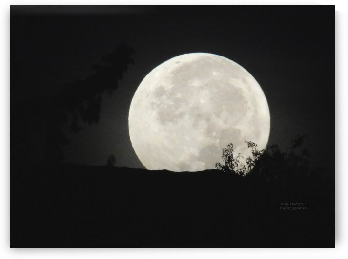 full moon by Adil BASSEL