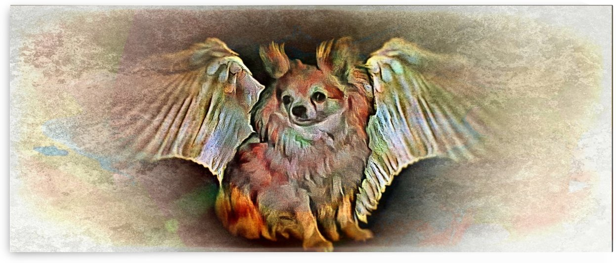 My Angel Waits For Me by Dorothy Berry-Lound