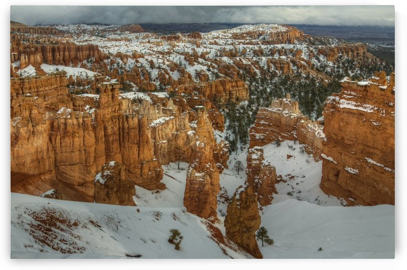 STORM BREWING OVER BRYCE CANYON by Bill Sherrell