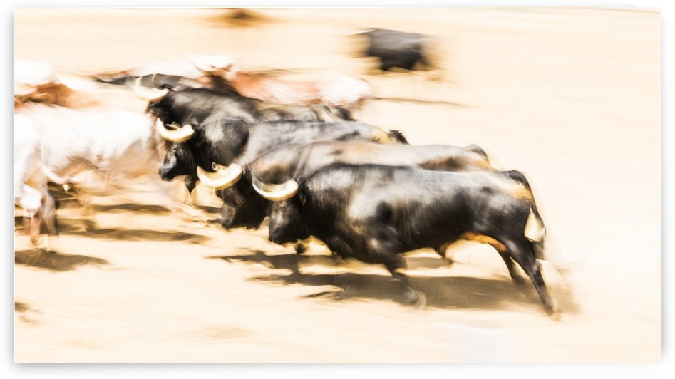 CHARGING BULLS by ANDREW LEVER GALLERY
