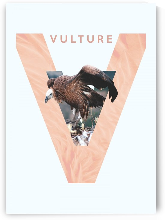 Vulture by ABConcepts