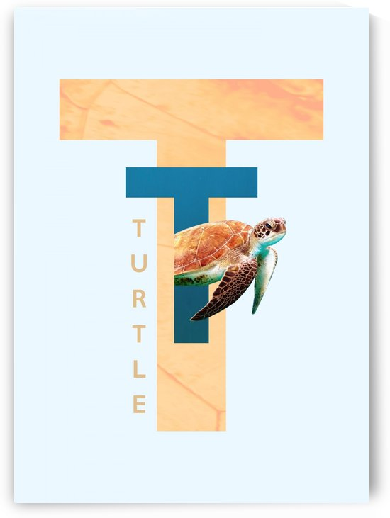 Turtle by ABConcepts