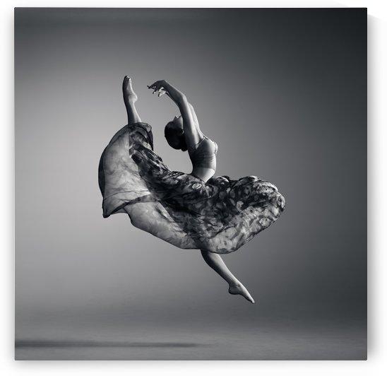 Ballerina jumping by Johan Swanepoel
