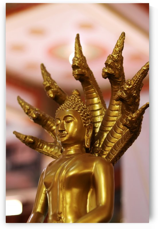 Golden Buddha Statue by Krit of Studio OMG