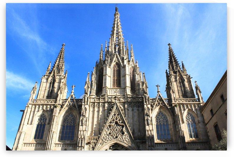 Barcelona Cathedral by Alessandro Bentivoglio