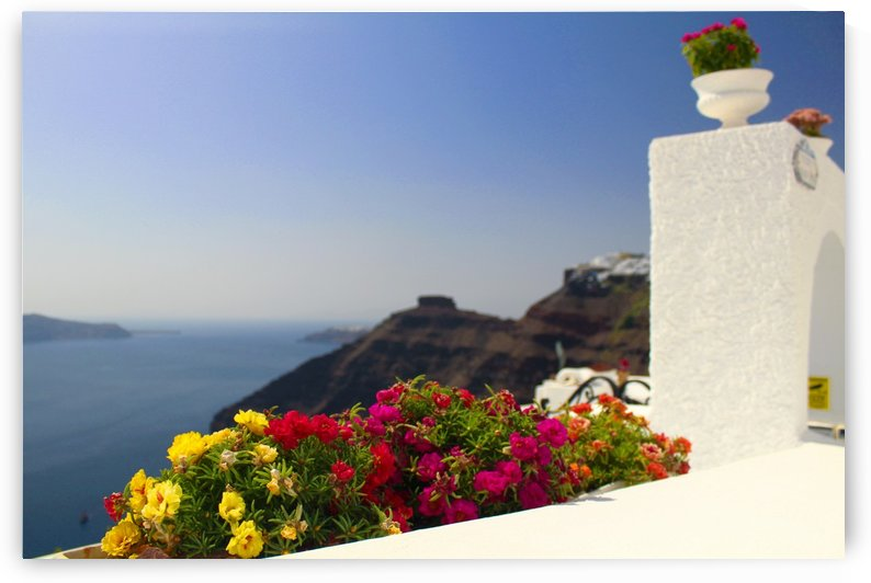 Santorini landscape-  Red Flowers by Bentivoglio Photography