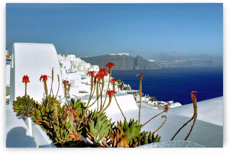 Santorini landscape  by Bentivoglio Photography
