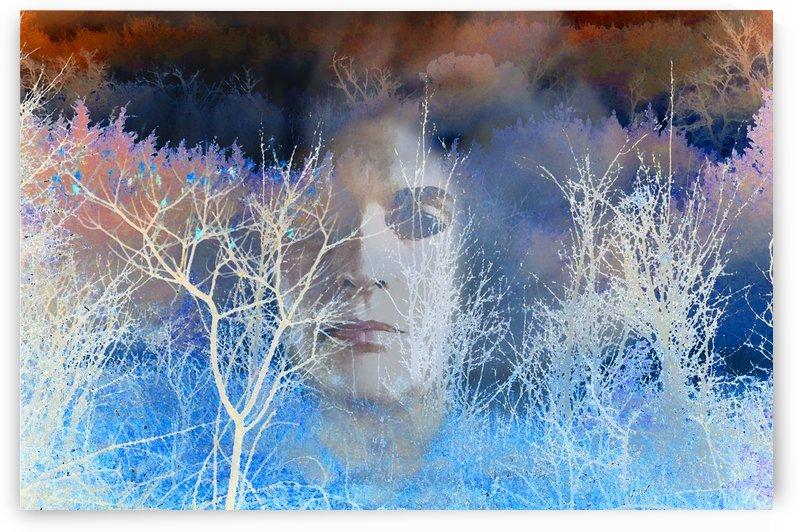 Behind the shadows by Ann Ciarico