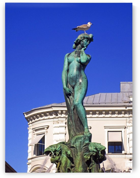 The Bird and The Lady by Gods Eye Candy