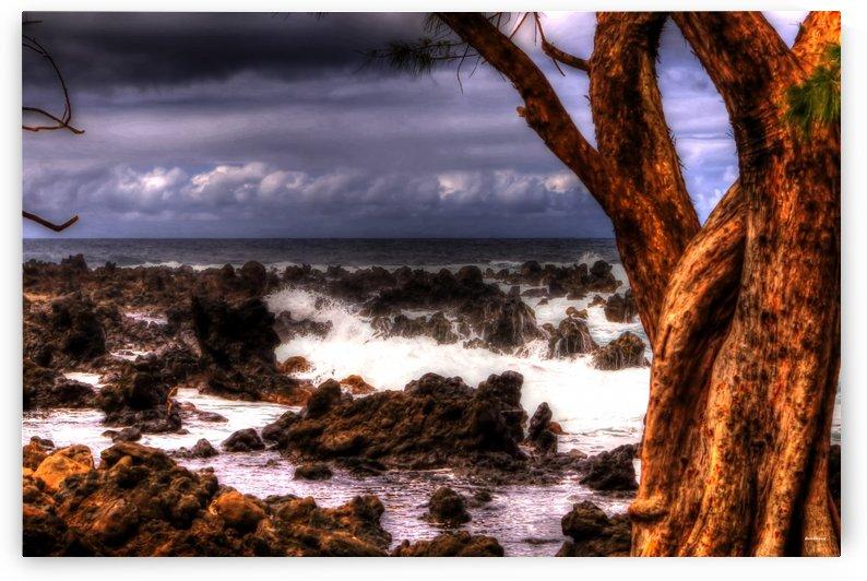 Maui coast by tom Prendergast