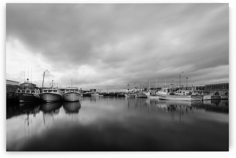 Monochrome harbor by Roman Buchhofer