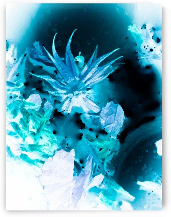 Bleu Bird Ingnite  by VortexStyle