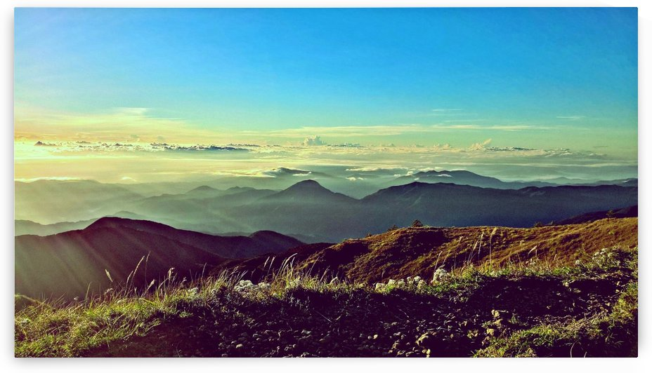 Up above the clouds at Mt. Pulag by Karen